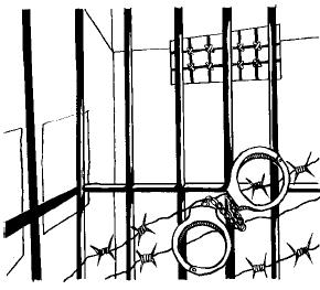 """""""Вор должен сидеть в тюрьме"""""""